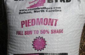 Piedmont Grass