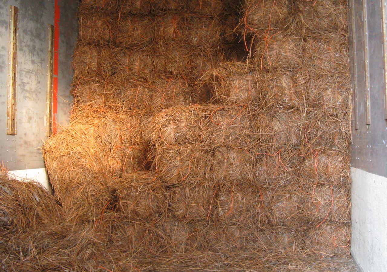 Bales of Pine Straw