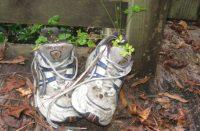 Gardener's Gear