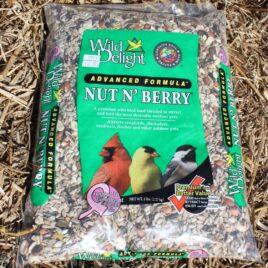 Nut n' Berry Bird Seed