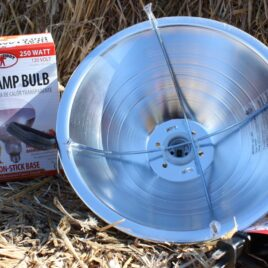 Brooder Lamp and bulb