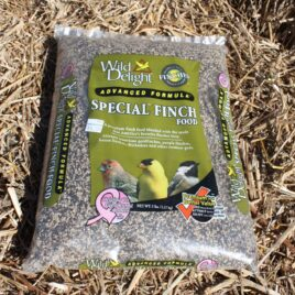 Special Finch Food