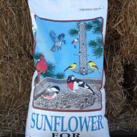 Black Oil Sunflower Seed 25lb