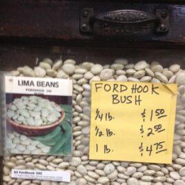 Fordhook Bush Lima Bean