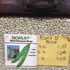 Roma II Bush Bean