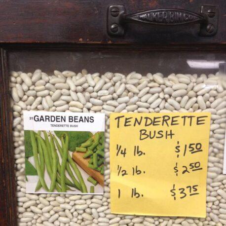 tenderette bush