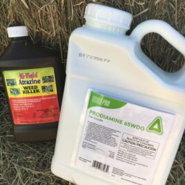 St. Augustine and Centipede Weed Control Combo