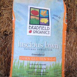 Lucious Lawn Corn Gluten