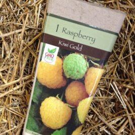 Kiwi Gold Raspberry