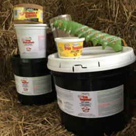 Tanglefoot Cankerworm Supplies