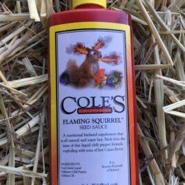 Flaming Squirrel